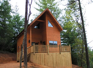Blue Ridge Parkway Cabin Rentals - Stay 3 get 1 Free
