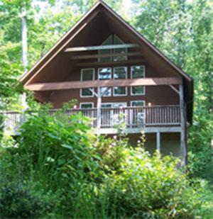 Cabin in Asheville