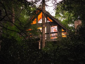 Mt. Mitchell Vacation Rentals