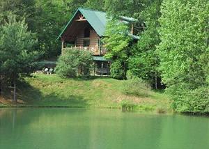 Mountain paws cabin rentals blue ridge ga blue ridge for Blue ridge mountain tennessee cabin rentals