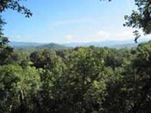 Smoky Mountain Getaway Cabin Rentals