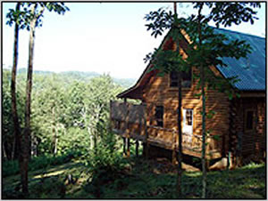 Cabins At Zydceco Moon Farm