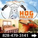 Hog Hollow