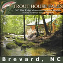 Trout House Falls Secluded Waterfall Cabin in The BlueRidge Mountains